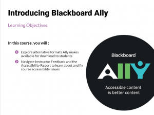 Introducing Blackboard Ally tutorial preview